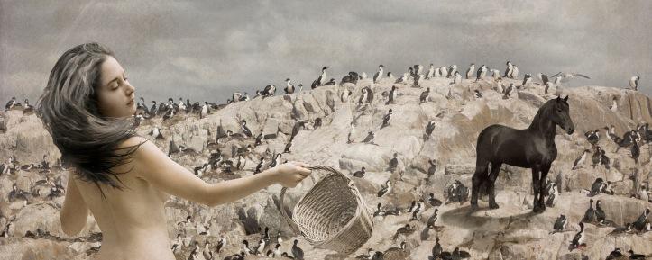 01_Isla de los pájaros_Julieta Anaut