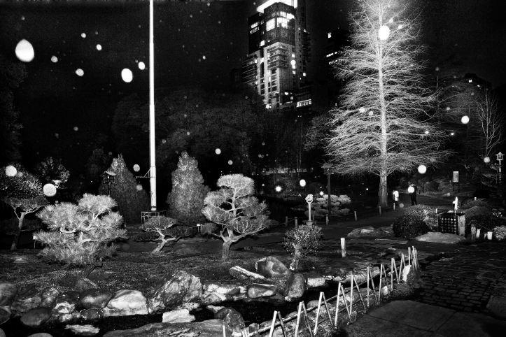 nicolasjanowski_a City Blurred-1